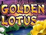 Золотой лотос
